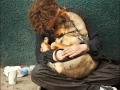 homeless_sleeping_dog